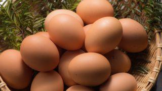 これで温泉卵が簡単に作れちゃう! おすすめアイテムを紹介!