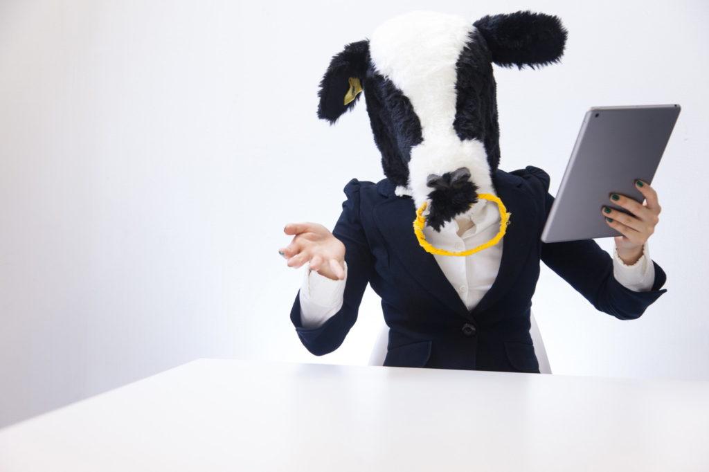 IT業界でよくある面談とは?面談の流れと注意点・コツご紹介