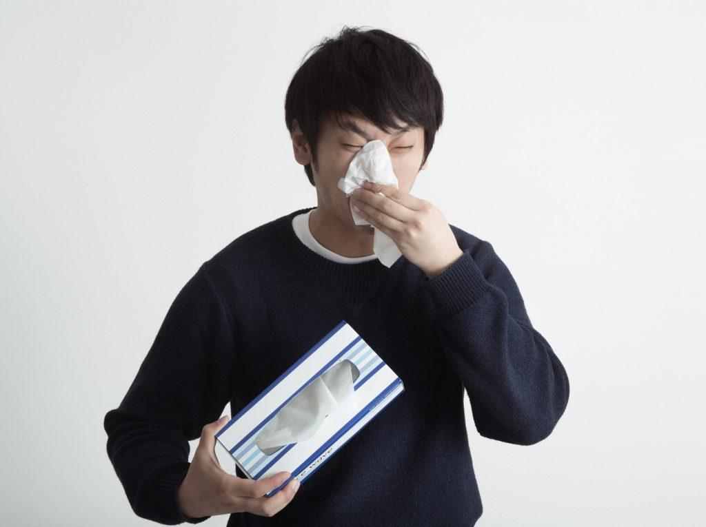 花粉症を発症した!?と思ったけど部屋の掃除をしたら鼻炎が直った話