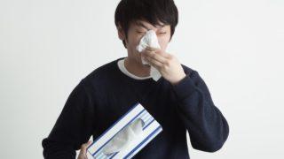 花粉症を発症した!?と思ったけど部屋の掃除をしたら鼻炎が治った話